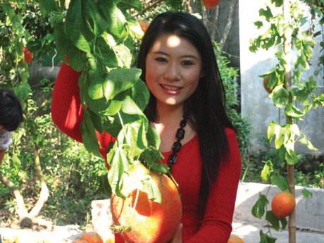 视网膜的守护星越南木鱉果